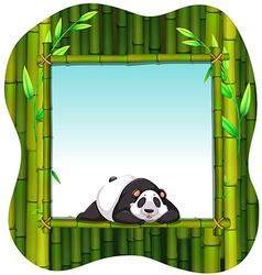 Bamboo frame and panda vector image