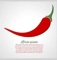 card with chili pepper vector image vector image
