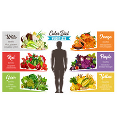 Color diet healthy food banner for weight loss vector