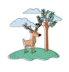 Deer cartoon with long horns in outdoor scene with vector
