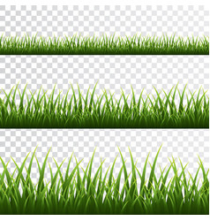Green grass border set on transparent background vector