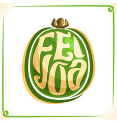 logo for feijoa vector image