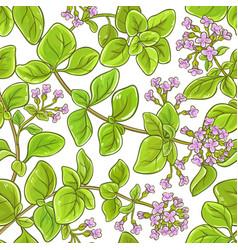oregano branch pattern vector image