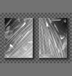 Plastic film transparent cellophane stretch wrap vector