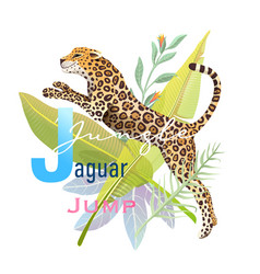 animal abc letter j is for jaguar jungle jump vector image