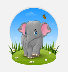 cartoon baby elephant in the grass vector image