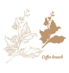 Coffee hatching silhouette 2 vector
