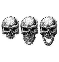 detailed graphic human skull trash polka line art vector image