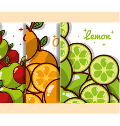 fruits banner nutrition diet organic vector image