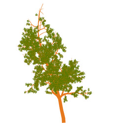 High quality tree with leaves vector