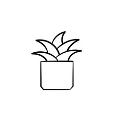 Mother-in-law tongue plant hand drawn sketch icon vector