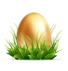 realistic golden egg and green grass isolated on vector image