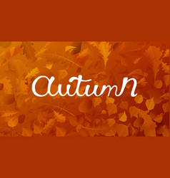 stock autumn falling leaves on vector image
