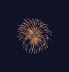 firework or firecracker flash onbackground flat vector image