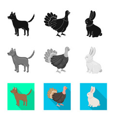 Isolated object breeding and kitchen icon vector