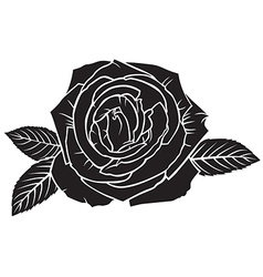 rose top vector image