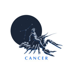 sign of the zodiac cancer vector image