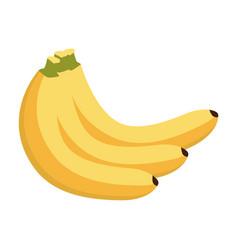 banana fruit healthy icon vector image vector image