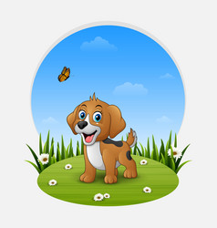 cartoon happy dog on the grass vector image