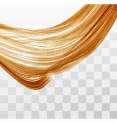Closeup of long human hair vector image