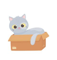 cute gray cat lying in cardboard box cartoon vector image