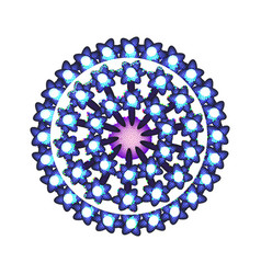 Human papilloma virus the structure virus vector