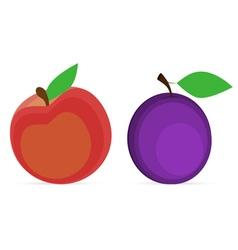 Plum and peach vector
