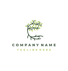 tree and roots logo design isolated abstract vector image