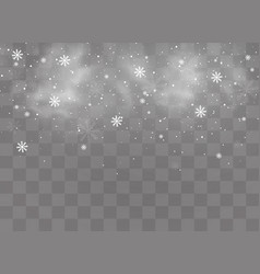 winter and snow vector image