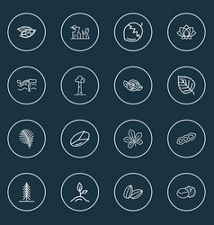 world icons line style set with canyon cardamon vector image