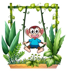A monkey with a blue shirt vector image vector image