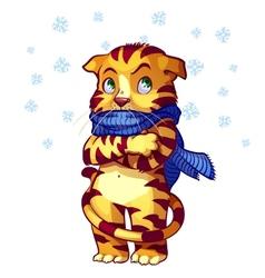 Frozen cat vector