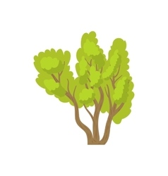 Green multi stemmed tree icon cartoon style vector image vector image