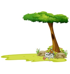 A gray cat playing with a string ball under a tree vector image