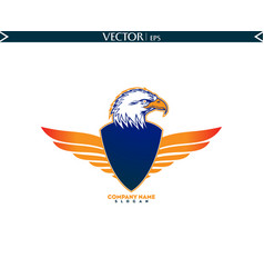 Bald eagle with shield straight wings vector