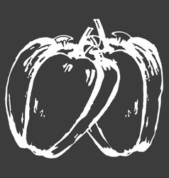 hand drawn two white peppers isolated on dark vector image