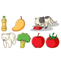 Large set different animals and other objects vector