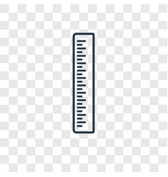 ruler concept linear icon isolated on transparent vector image
