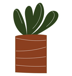 simple a plant with round leaves in a brown vector image