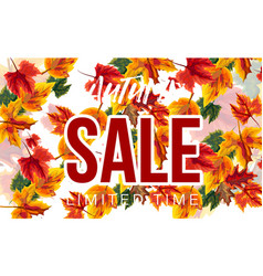 stylish banner with autumnal sale vector image