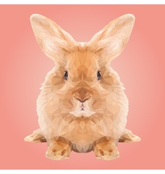 Abstract Low Poly Rabbit Design vector image