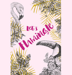 hand drawn flamingo and tukan design lets vector image