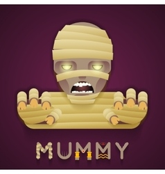 Halloween Party Mummy Role Character Bust Icon vector image