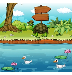 A turtle near the wooden arrowboards at the vector image vector image