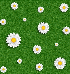 Background grass and flowers image vector