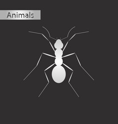 Black and white style icon of ant vector