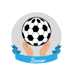 emblem soccer game icon vector image