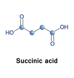 Succinic is a dicarboxylic acid vector