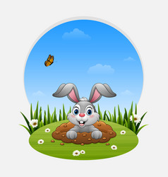Cartoon rabbit come out of the hole on the grass vector