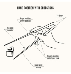 Hand position with chopsticks vector image